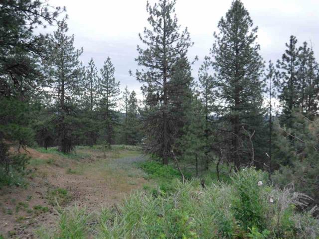 X Bigfoot Ln, Elk, WA 99009 (#201918136) :: The Spokane Home Guy Group