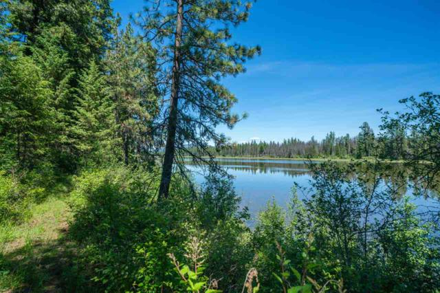 9115 Kelso Lake Rd, Priest River, ID 83856 (#201918160) :: The Spokane Home Guy Group