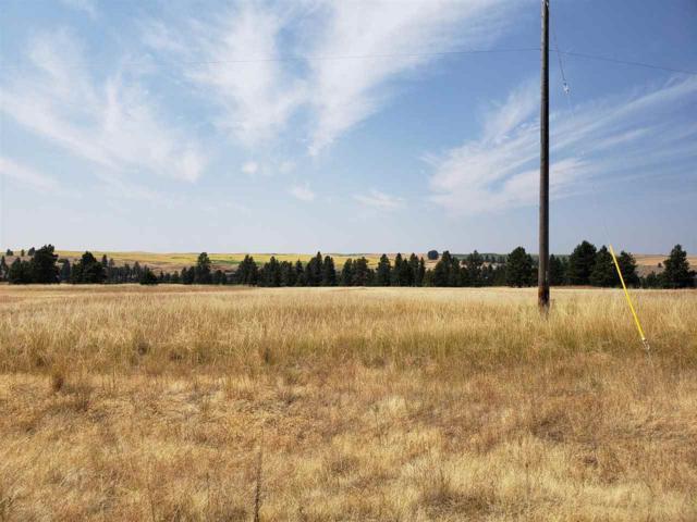 TBD Kentuck Trails St, Spokane, WA 99031 (#201918294) :: Prime Real Estate Group
