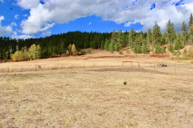 2034A Dry Creek Rd Lot 3, Chewelah, WA 99109 (#201918313) :: 4 Degrees - Masters