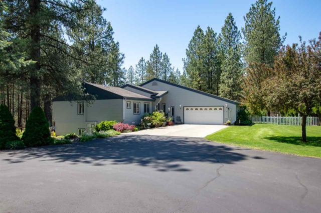 23317 N Elk-Chattaroy Rd, Chattaroy, WA 99003 (#201918326) :: The Spokane Home Guy Group