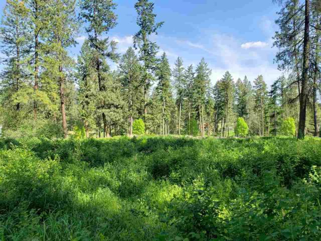 828 Evergreen Way, Colville, WA 99114 (#201918346) :: The Spokane Home Guy Group