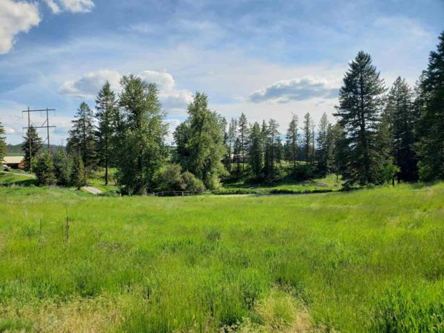2028 Ringneck Loop, Colville, WA 99114 (#201918354) :: The Spokane Home Guy Group