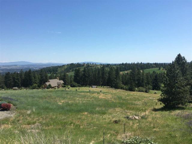 15525 N Dalton Rd, Spokane, WA 99208 (#201918465) :: The Synergy Group