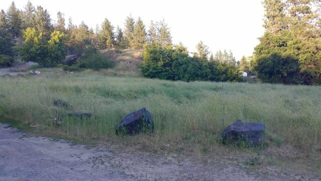 TBD E Fredrick Ave, Spokane, WA 99217 (#201918503) :: Northwest Professional Real Estate
