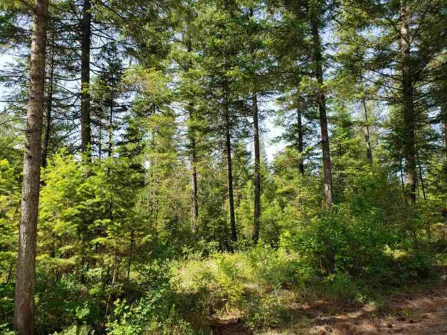 Grouse Creek Rd, Loon Lake, WA 99148 (#201918627) :: 4 Degrees - Masters