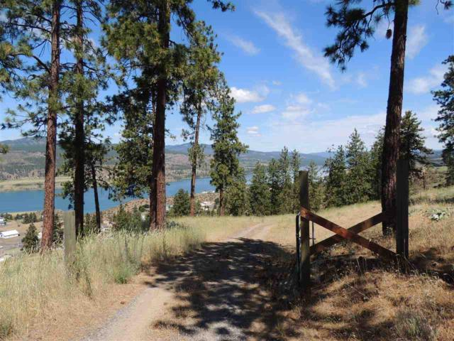 Lot 2 Wisecarver Estates Short Plat, Davenport, WA 99122 (#201918740) :: 4 Degrees - Masters