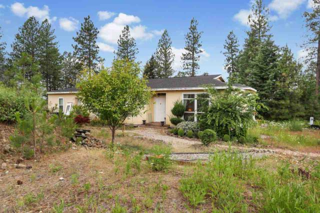 23320 N Orchard Bluff Way, Chattaroy, WA 99003 (#201918788) :: Five Star Real Estate Group