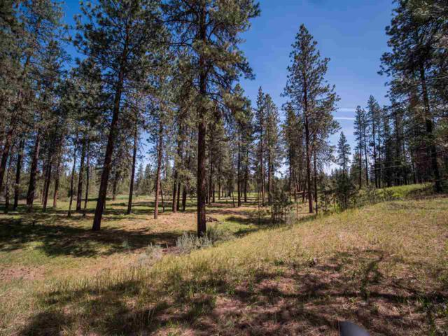 "NHN Carp Lake Rd Parcel ""B"" (Lot, Davenport, WA 99122 (#201918798) :: 4 Degrees - Masters"