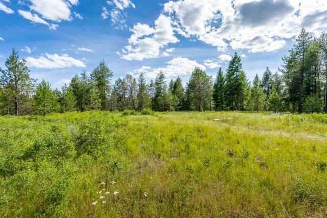 10700 N Whispering Pines Rd, Elk, WA 99009 (#201918838) :: RMG Real Estate Network