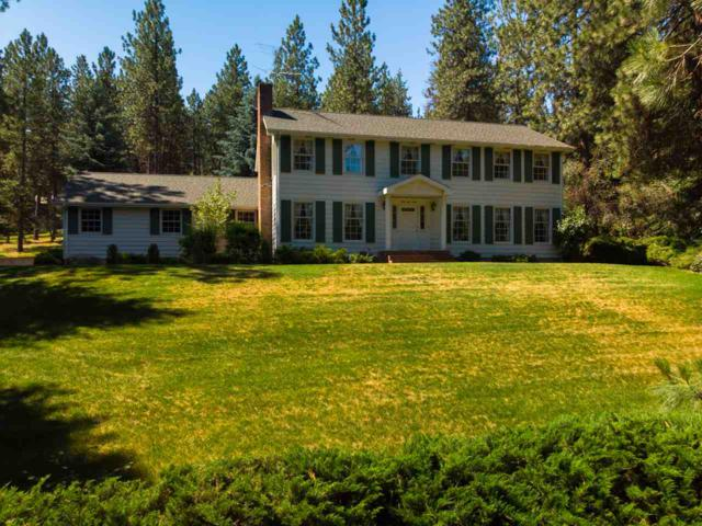 4130 S Terra Verde Dr, Veradale, WA 99037 (#201919109) :: Chapman Real Estate