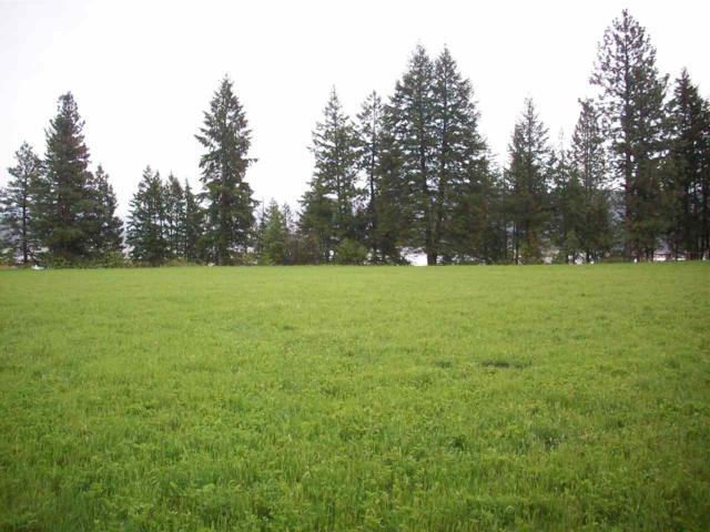 Lot 1A Crane Rd, Kettle Falls, WA 99141 (#201919372) :: The Synergy Group