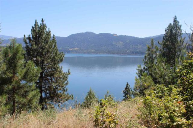 1714 B Northport Flat Creek Rd, Kettle Falls, WA 99141 (#201919374) :: The Synergy Group