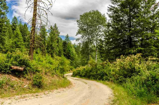 745-? Dry Gulch Rd, Colville, WA 99114 (#201919389) :: The Synergy Group