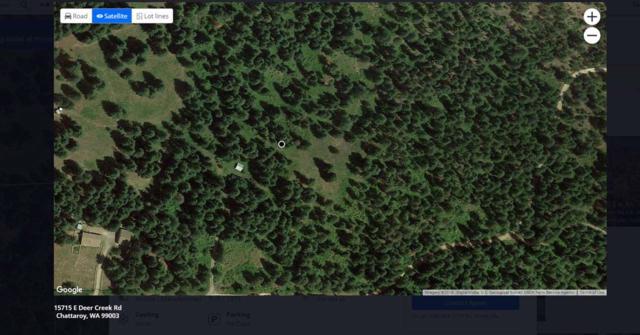 15715 E Deer Creek Rd, Chattaroy, WA 99003 (#201919431) :: The Synergy Group