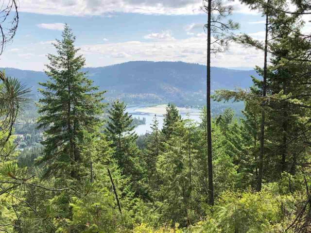 "13200 W Pinebluff Rd Lot ""B"", Nine Mile Falls, WA 99026 (#201919612) :: THRIVE Properties"