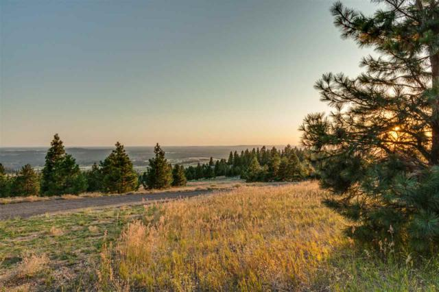 6707 E Sagewood Ln Lot #1, Spokane, WA 99223 (#201919623) :: The Synergy Group