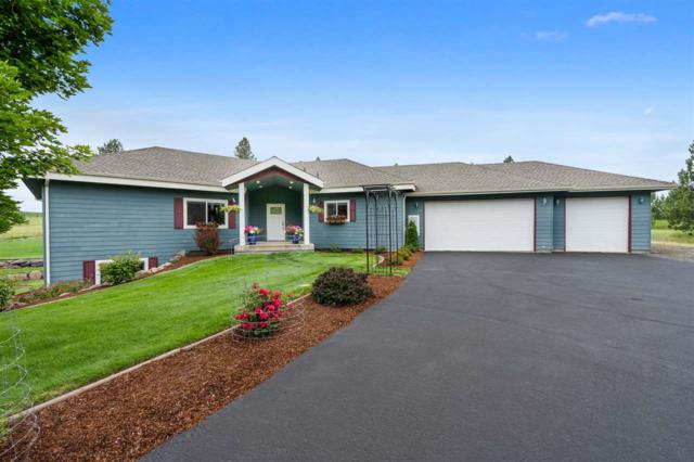 14212 E Meadows Rd, Mica, WA 99023 (#201919624) :: The Synergy Group