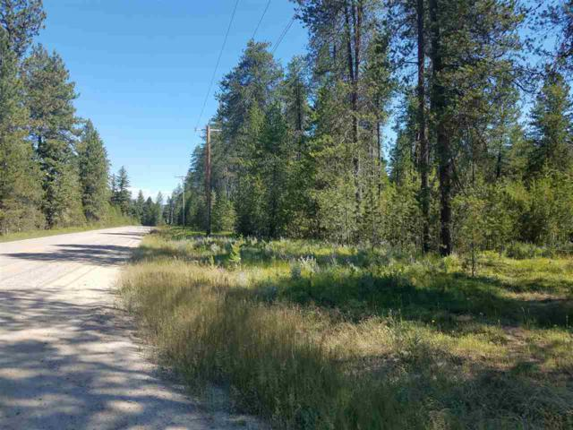 9300 E Muehle Rd, Elk, WA 99009 (#201919631) :: RMG Real Estate Network