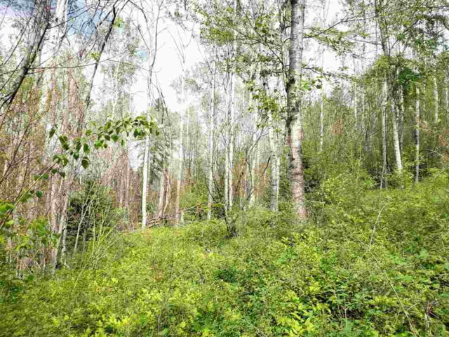 4010 TBD Deep Lake Boundary Rd, Colville, WA 99114 (#201919718) :: Prime Real Estate Group