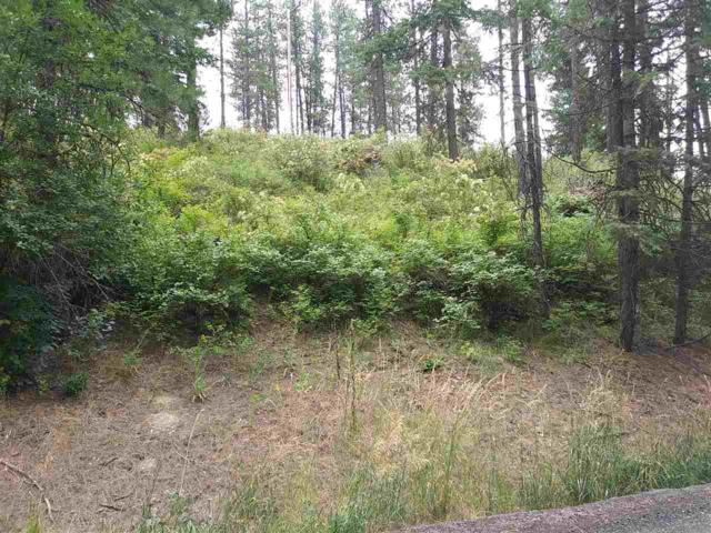 19XXX N Holcomb Rd, Mead, WA 99021 (#201919767) :: 4 Degrees - Masters
