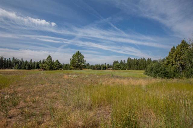 00 S Oak Rd, Spokane, WA 99224 (#201919810) :: Chapman Real Estate