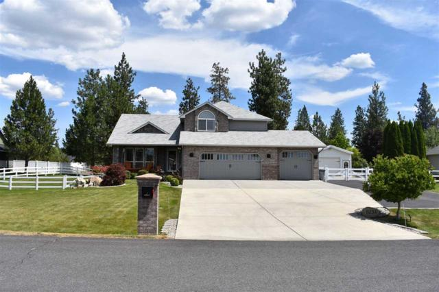 6234 Moriah Dr, Nine Mile Falls, WA 99026 (#201919897) :: 4 Degrees - Masters