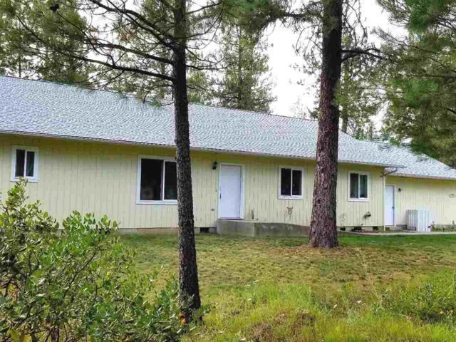 41311 N Malachi Ln, Elk, WA 99209 (#201920205) :: RMG Real Estate Network