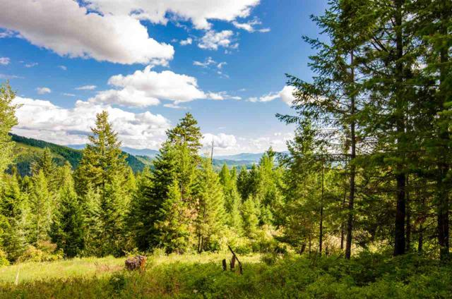 745 B Dry Gulch Rd, Colville, WA 99114 (#201920208) :: The Synergy Group
