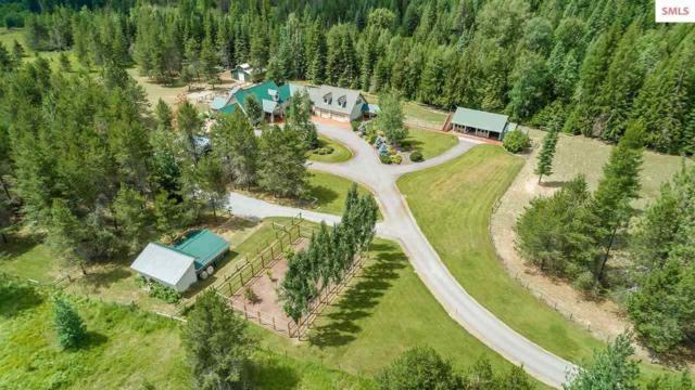 3688 Wrenco Loop Rd, Sandpoint, ID 38364 (#201920297) :: The Synergy Group