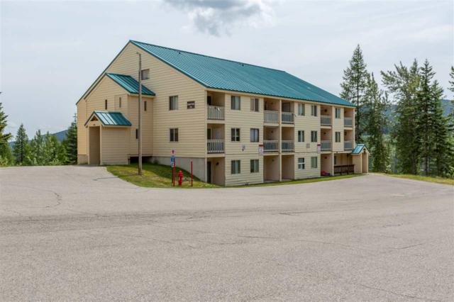 28600 N Mt. Spokane Park Dr #701, Mead, WA 99021 (#201920389) :: Top Spokane Real Estate
