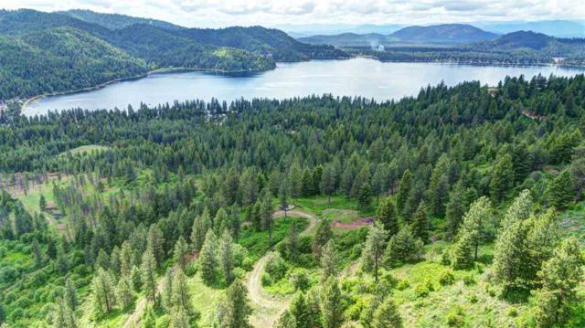 4639 Howard Hills Way New Parcel Numb, Loon Lake, WA 99148 (#201920432) :: THRIVE Properties