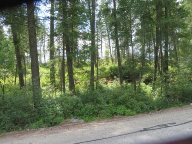 0 Deer Park Milan Rd, Chattaroy, WA 99003 (#201920885) :: Five Star Real Estate Group
