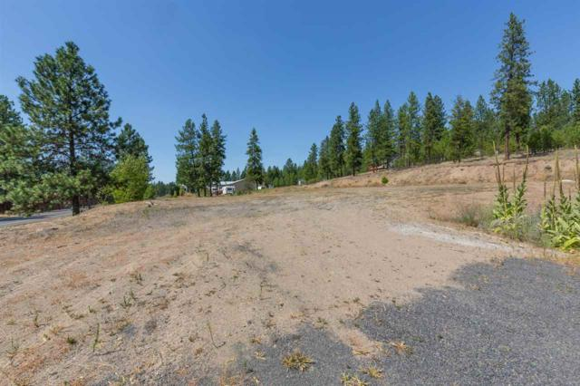 6050 N Sunview Way, Nine Mile Falls, WA 99026 (#201921010) :: Northwest Professional Real Estate