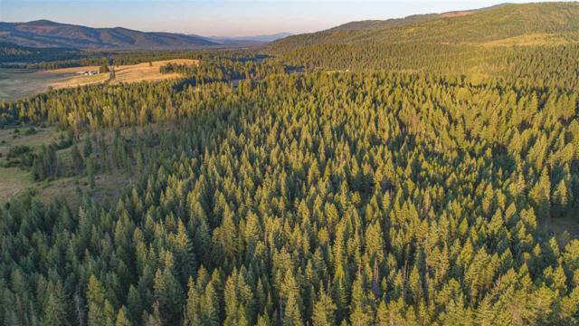 Lot 35 N Rayona Ln, Elk, WA 99009 (#201921038) :: The Synergy Group
