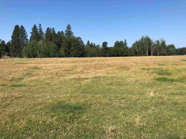 360XX Conklin Rd, Elk, WA 99009 (#201921368) :: The Synergy Group