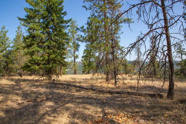 NKA Five Mile Rd Lot 2, Spokane, WA 99218 (#201921454) :: The Spokane Home Guy Group