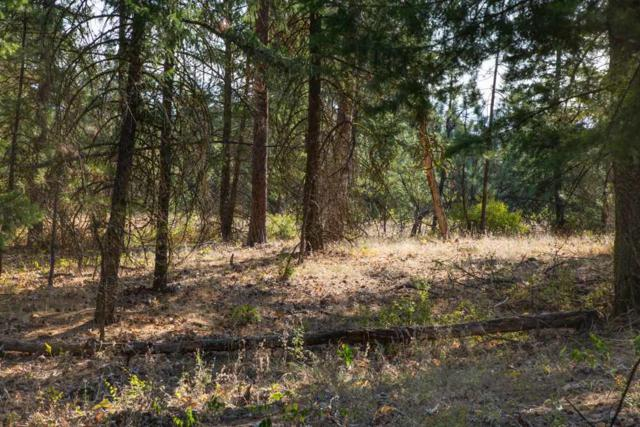 NKA Five Mile Rd Lot 3, Spokane, WA 99218 (#201921456) :: The Synergy Group