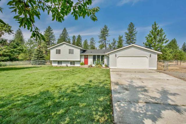 16377 N Greenfield Ct, Nine Mile Falls, WA 99026 (#201921558) :: RMG Real Estate Network