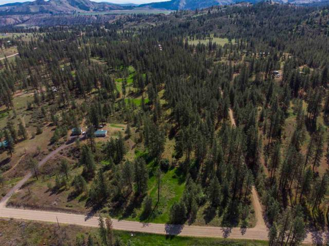 NHN Carp Lake Rd Sun Pine Lots 8, Davenport, WA 99122 (#201921756) :: 4 Degrees - Masters