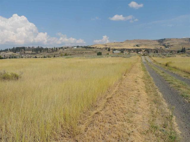 Lot 1 Miller Short Plat, Deer Meadows, WA 99122 (#201921832) :: 4 Degrees - Masters