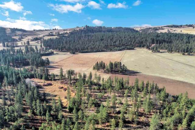 000 Spotted Rd, Cheney, WA 99004 (#201923395) :: THRIVE Properties