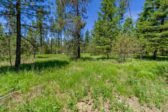 3791 Meadowlark Way, Loon Lake, WA 99148 (#201923508) :: The Synergy Group