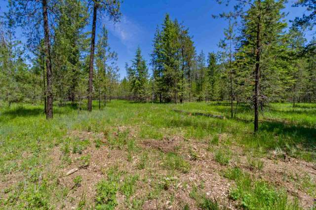3795 Meadowlark Way, Loon Lake, WA 99148 (#201923515) :: The Synergy Group