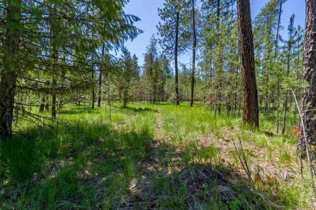 3801 Meadowlark Way, Loon Lake, WA 99148 (#201923545) :: The Spokane Home Guy Group