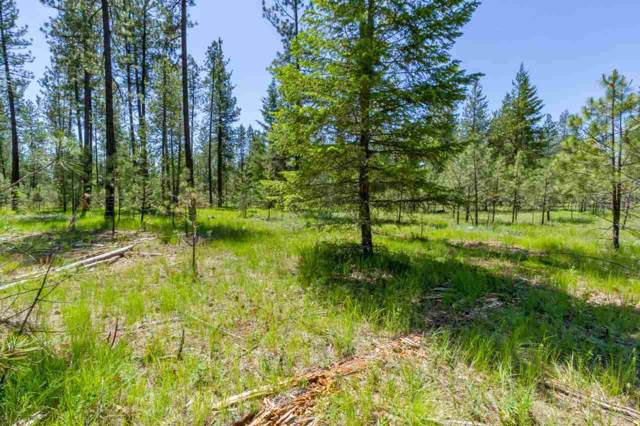 3807 Meadowlark Way, Loon Lake, WA 99148 (#201923547) :: The Synergy Group