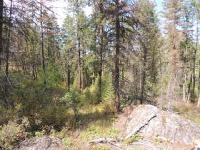 LOT 7 Crown Ridge Way, Colville, WA 99114 (#201923603) :: The Spokane Home Guy Group