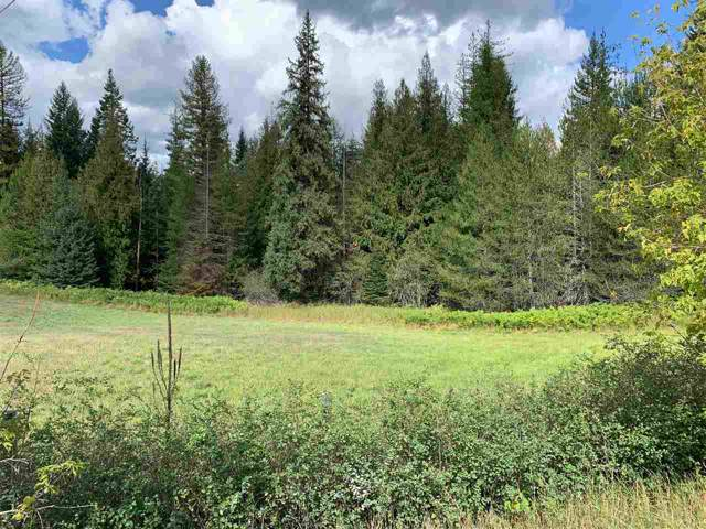 1304 Flowery Trail Rd, Usk, WA 99180 (#201923696) :: 4 Degrees - Masters