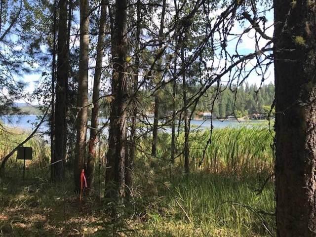 000 S Loon Lake Rd, Loon Lake, WA 99148 (#201923748) :: The Spokane Home Guy Group