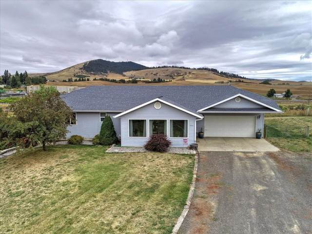 905 E Seamon Rd, Tekoa, WA 99033 (#201923767) :: Top Agent Team